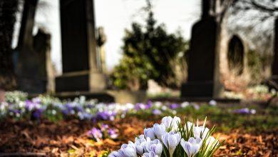 Photo of La importancia de la administración privada en los cementerios públicos.