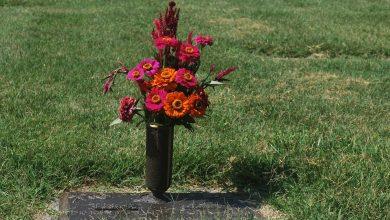 Photo of Los servicios funerarios ¿terminan en el panteón o en la cremación?