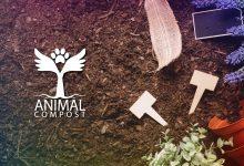 Photo of Compostaje de Mascotas – Una revolución al mercado funerario de mascotas.