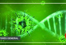 Photo of COVID-19, Un virus que de la noche a la mañana nos cambió la vida.